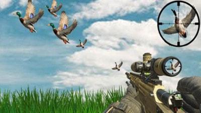 野外猎鸭模拟器截图1