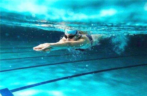 游泳的技巧与方法视频教程截图3