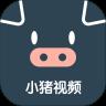 小猪视频app多人运动