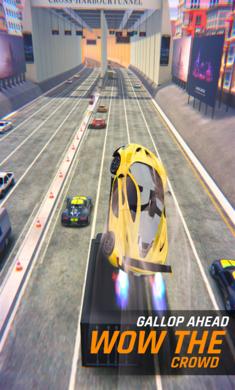 狂野飞车3D破解版截图4