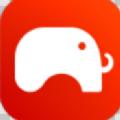 淘大象app
