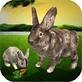 终极兔子模拟器