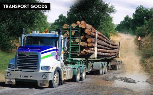 重型货车疯狂运输截图3