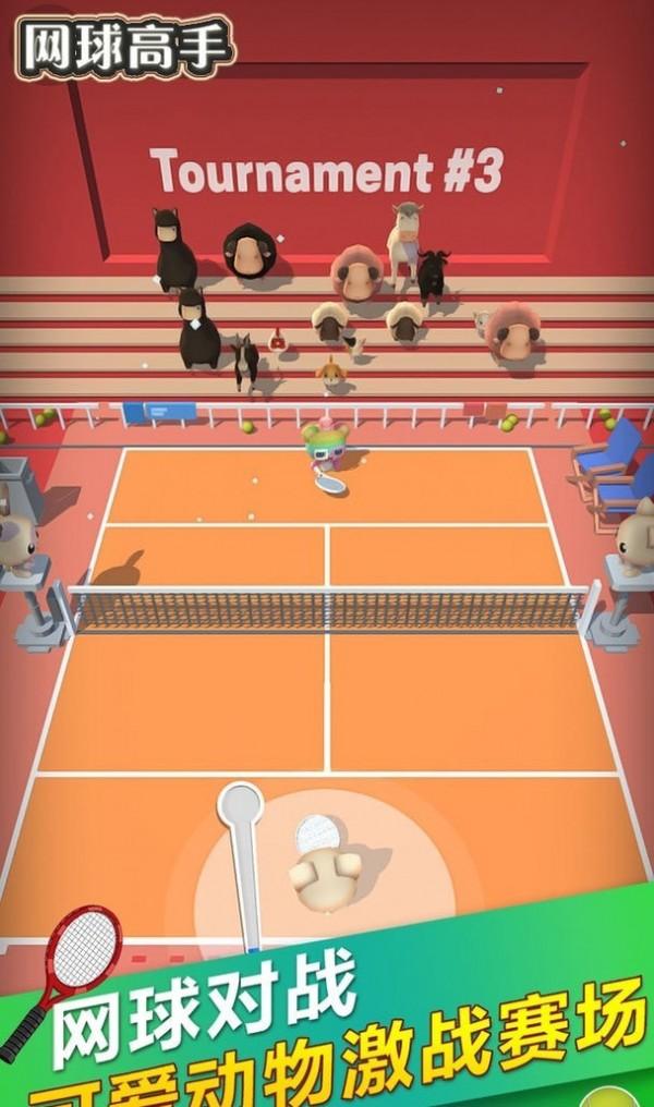 网球高手截图1