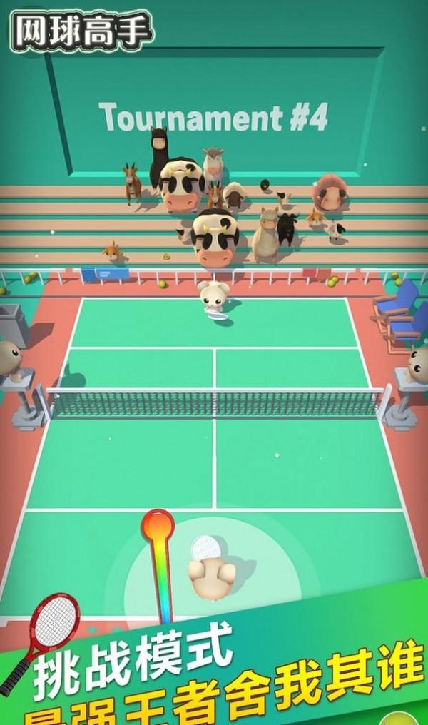 网球高手截图4