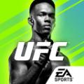 UFC终极格斗冠军2