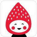草莓直播平台